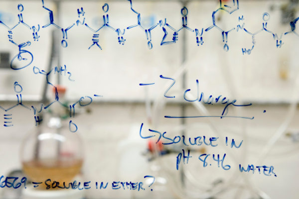 Notes, equations and chemical structures of peptides, fragments of proteins, are written on the glass of a fume hood in Laura L. Kiessling's research lab