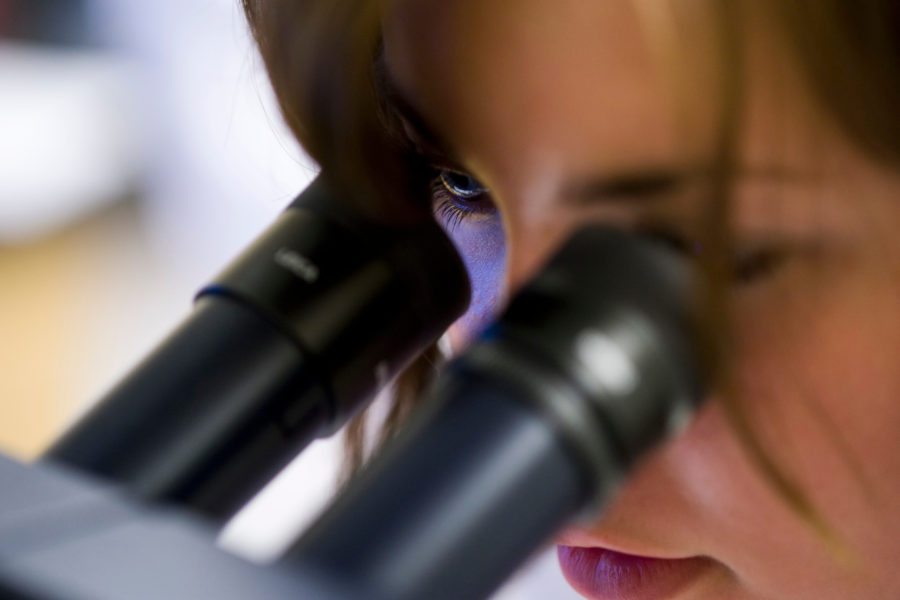 A summer science camp participant peers into a microscope