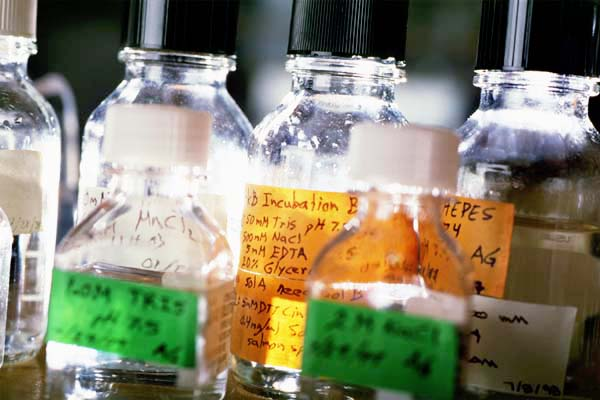Chemical samples in a Biomolecular Chemistry research lab
