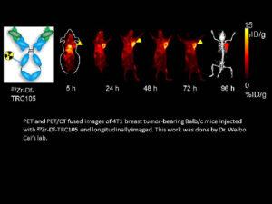 PET and PET/CT fused images of six 4T1 breast tumor-bearing Balb/c mice longitudinally imaged.
