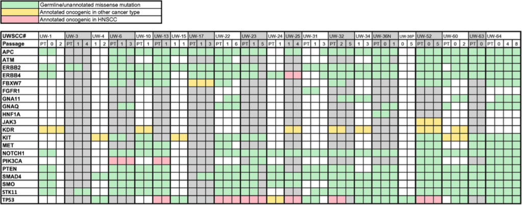 Chart of mutational profile of patient and xenograft samples, showing patient primary tumor samples, and first and last xenograft passages with usable sequence data for a given tumor