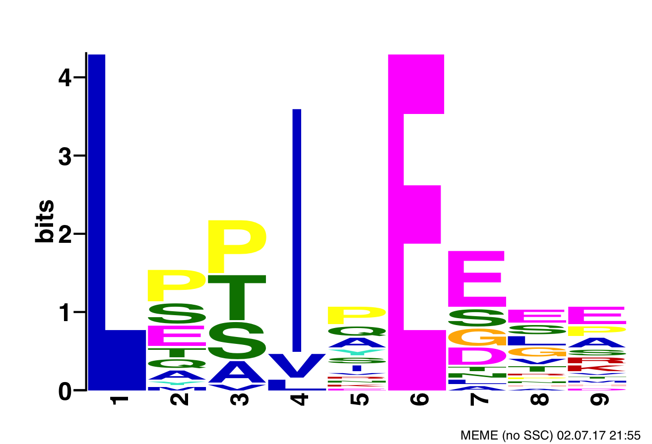 Positional specific scoring matrix showing the motif of B'α subunit of PP2A's binding sites.