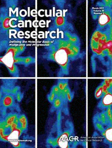 """The March 2017 cover of """"Molecular Cancer Research"""" is a photo taken by SAIF of several scans of small animals and their tumors."""